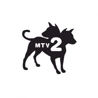 mtv2-2